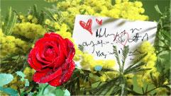 Auguri romantici per la Festa della Donna