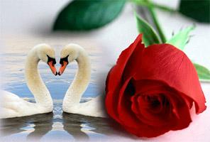 San Valentino per coppie di innamorati
