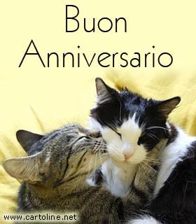 Bacio tra gatti per l 39 anniversario for Auguri anniversario