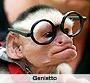 Scimmia genietto