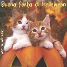 Buona Festa Di Halloween.Felici Festeggiamenti Ad Halloween