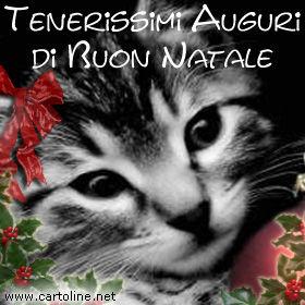Auguri di natale da gattino for Messaggi divertenti natale
