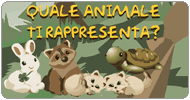 Test: Quale animale sei?